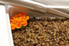 lenticchie-pausa-pranzo-flora-verona