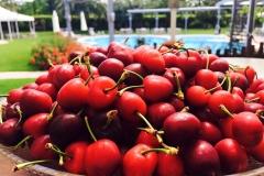 ciliegie-giardino-piscina-ristorante-dragonara