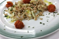 farro-insalata-baccalà-pomodorini-confit-germogli-soia-ristorante-dragonara