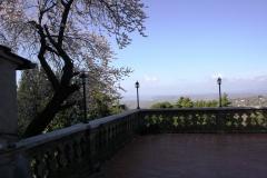 La terrazza dell'Osteria del Mandorlo a Calvi